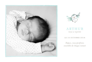 Faire-part de naissance Hibou aquarelle photo blanc