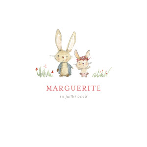 Faire-part de naissance Petits lapins (2 enfants) fille