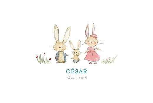 Faire-part de naissance Petits lapins (3 enfants) garçon