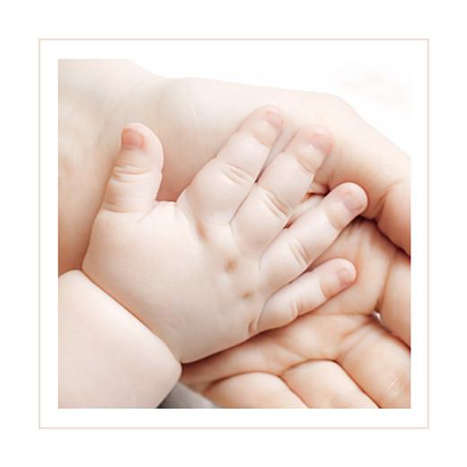 Faire-part de naissance Chat & compagnie (triptyque) poudre