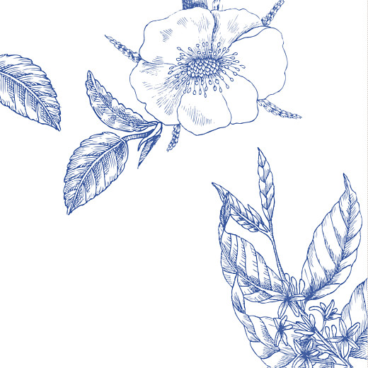 Faire-part de mariage Gravure chic bleu - Page 2
