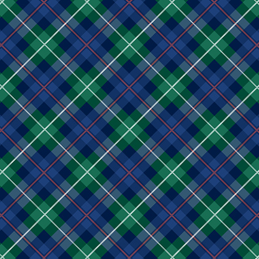 Carte de remerciement Petit écossais bleu & vert