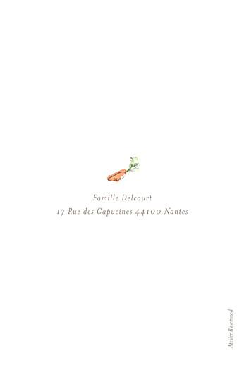 Faire-part de naissance Petit lapin champêtre fille - Page 4