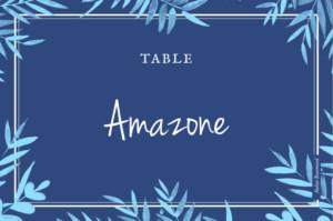 Marque-table mariage Feuillage bleu