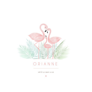 Faire-part de naissance Flamant rose 2 photos blanc