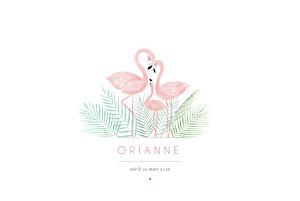 Faire-part de naissance sans photo flamant rose paysage rv blanc