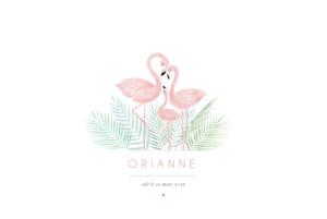 Faire-part de naissance Flamant rose paysage rv blanc
