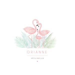Faire-part de naissance Flamant rose blanc