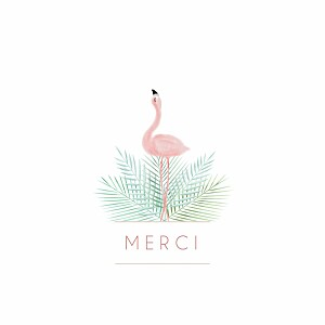 Carte de remerciement Petit flamant rose photo blanc