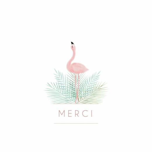 Carte De Remerciement Petit Flamant Rose Photo Atelier Rosemood