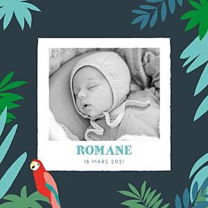 Faire-part de naissance marguerite courtieu perroquets des îles photo bleu nuit