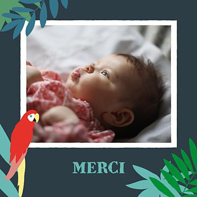 Carte de remerciement Petits perroquets des îles bleu nuit finition
