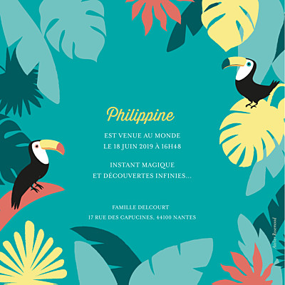 Faire-part de naissance Toucans d'amazonie photo bleu finition