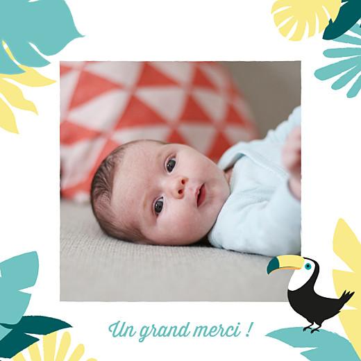 Carte de remerciement Petits toucans d'amazonie photo bleu - Page 2