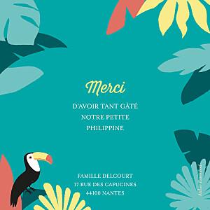 Carte de remerciement autour du monde petits toucans d'amazonie photo bleu
