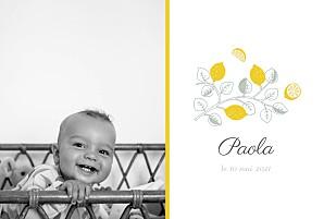 Faire-part de naissance jaune citrons 2 photos jaune