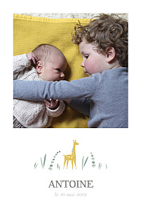 Faire-part de naissance jaune girafe 4 photos rv blanc