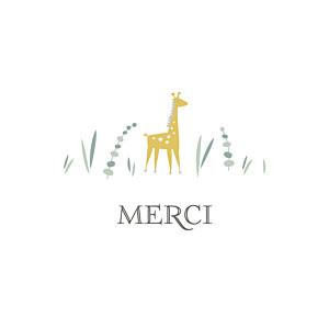 Carte de remerciement animaux petite girafe photo blanc