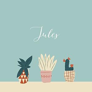 Faire-part de naissance bleu cacti cactus photo bleu