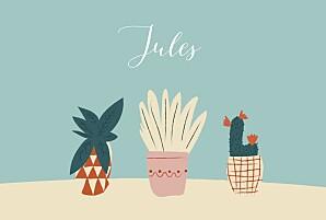 Faire-part de naissance marguerite courtieu cacti cactus 4 photos bleu
