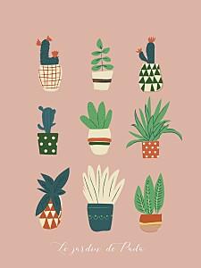 Affiche Cacti cactus rose