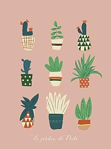 Affichette Cacti cactus rose