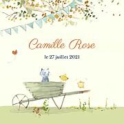 Faire-part de naissance Conte champêtre (triptyque) vert page 1