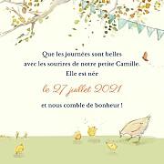 Faire-part de naissance Conte champêtre (triptyque) vert page 3
