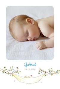 Faire-part de naissance Sur la branche portrait bleu