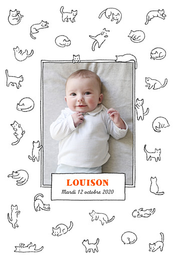 Faire-part de naissance Chaton portrait blanc