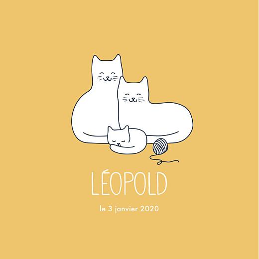 Faire-part de naissance Trois petits chats jaune