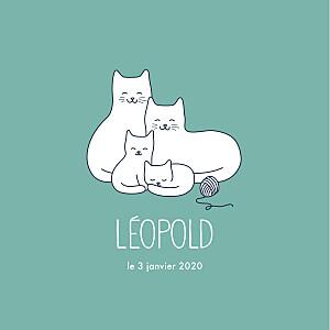 Faire-part de naissance vert quatre petits chats menthe