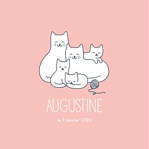 Faire-part de naissance Cinq petits chats rose