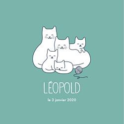 Faire-part de naissance vert cinq petits chats menthe