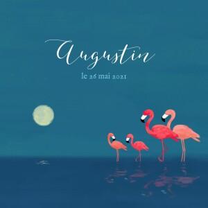 Faire-part de naissance 4 flamingos bleu