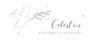 Etiquette perforée baptême Douce colombe bleu