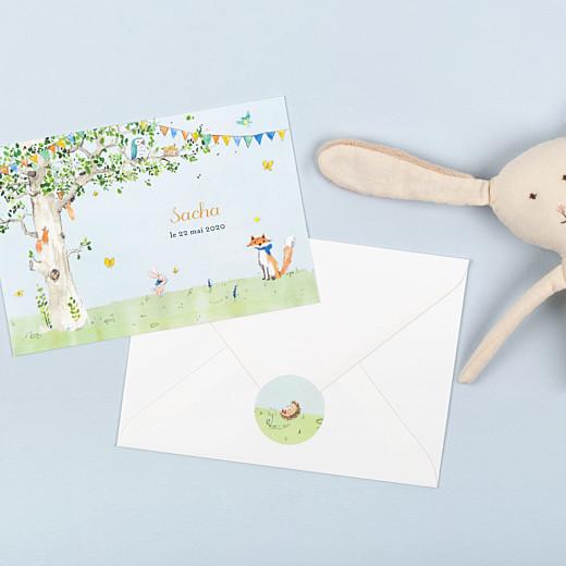 Stickers pour enveloppes naissance Nous irons au bois vert - Gamme