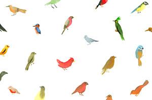 Carte de correspondance blanc jolis oiseaux blanc