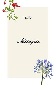 Marque-table mariage original mélopée blanc