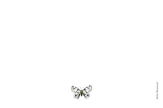 Carte de correspondance Mélopée blanc - Page 2