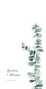 Menu de mariage classique eucalyptus blanc