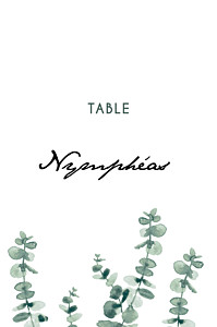 Marque-table mariage classique eucalyptus blanc