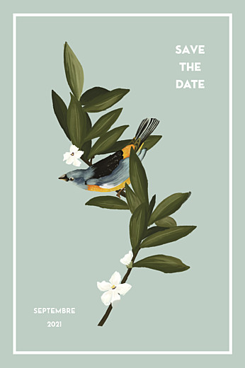 Save the Date Bahia bleu - Page 1