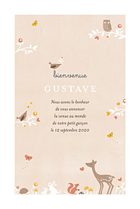 Faire-part de naissance printemps-eté forêt enchantée beige
