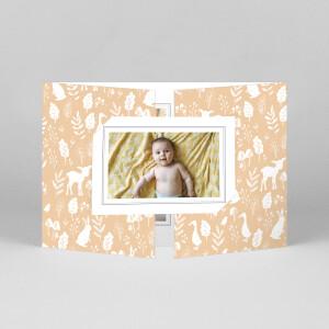 Faire-part de naissance Fable (fenêtre paysage) orange