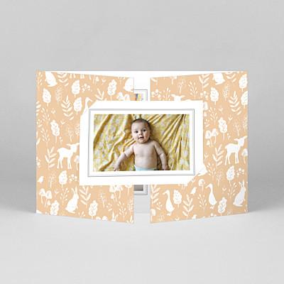 Faire-part de naissance vintage fable (fenêtre paysage) orange