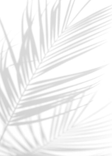 Livret de messe mariage Songe méditerranéen palmier - Page 2
