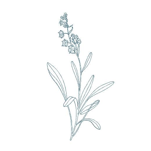 Carton réponse mariage Botanique bleu