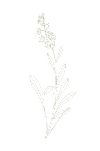 Carton réponse mariage Botanique (portrait) vert