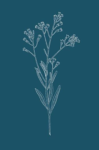 Carton d'invitation mariage Botanique (portrait) bleu